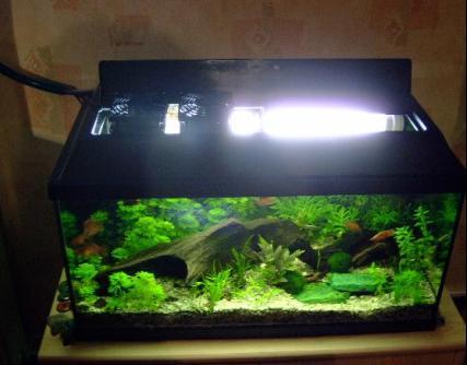 Der fertig installierte Lüfter in der Abdeckung meines 60 Liter Aquariums